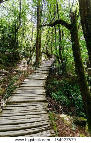 Stairs from the wood in the national park Plitvice Lakes