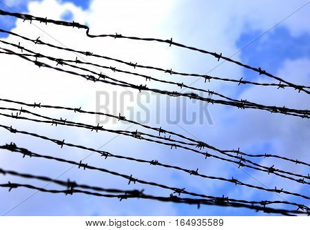 Dangerous And Sharp Barbed Wire To Demarcate The Prison Camp