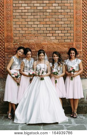 Young Bride In The Nice Dress With The Bridesmaids