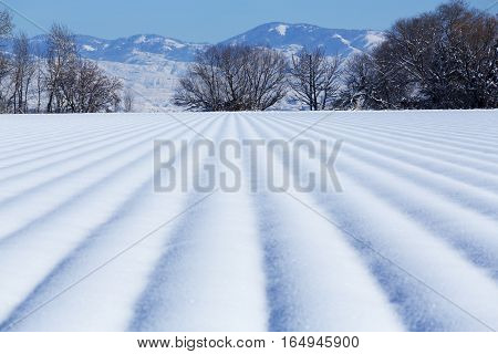 Fresh snow at the base of beautiful mountains