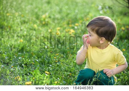 Little caucasian boy has allergies from yellow flower