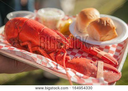 Close up of freshly steamed and boiled huge lobster. Lobster food festival