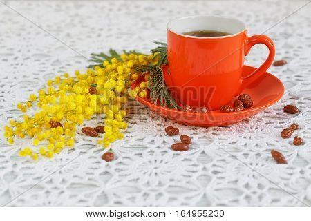 Coffee cup and saucer are decorated by a mimosa and candies on a beautiful crochet tablecloth