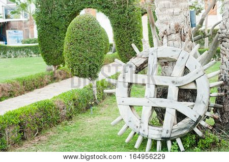 Park with shrubs and green lawns landscape design. Beautiful Garden with a Freshly Mowed Lawn Landscaping. Palm tree. Summer travel photo concept. Garden in hotel