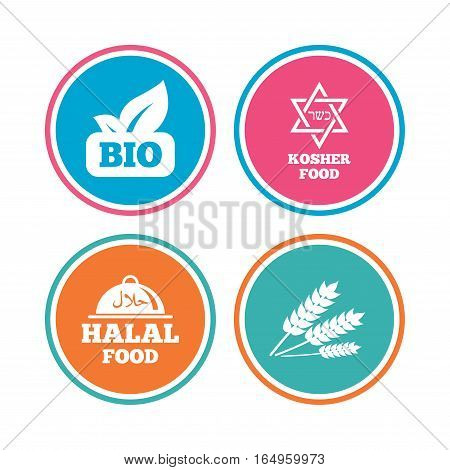 Natural Bio food icons. Halal and Kosher signs. Gluten free and star of David symbols. Colored circle buttons. Vector