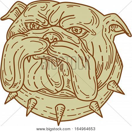 Mono line style illustration of a bulldog dog mongrel head mascot with collar viewed from front set on isolated white background.