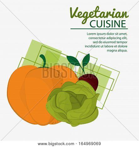 pumkin lettuce beet fresh natural vegetarian cuisine vector illustration eps 10