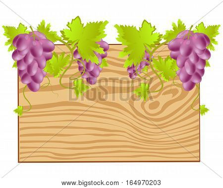 Wooden board with grape on white background is insulated