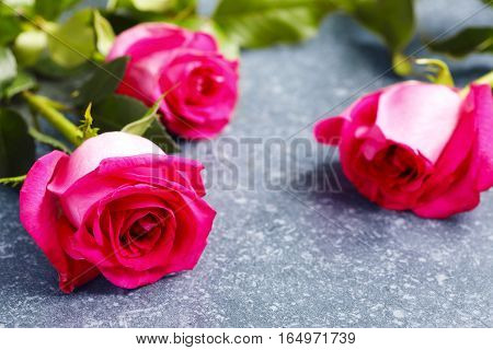Beautiful pink roses and gerberas on slate stone background