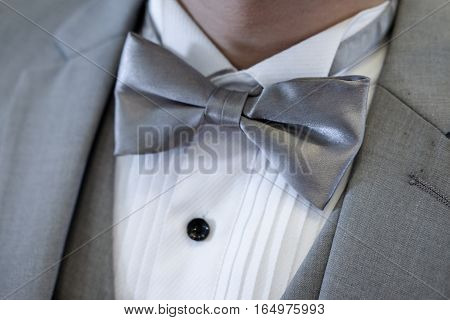 Expensive suit man wearing a gray suit and gray bow tie