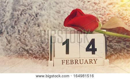 February 14 on wooden cube calendar red rose on blur fur background vintage style