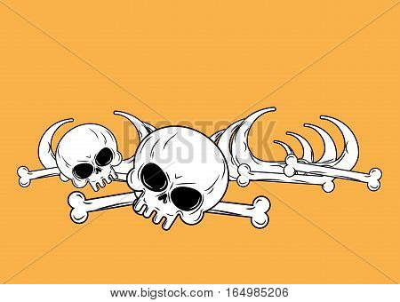 Human Remains  Isolated. Bones, Skeleton And Skull