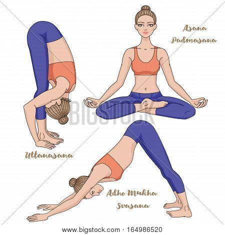 Women silhouette. Yoga lotus pose. Padmasana. Adho mukha svanasana. Downward dog. Uttanasana, forward fold yoga pose. Harmony, meditation Workout Vector illustration