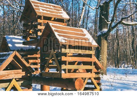 Wooden feeders for birds in winter forest