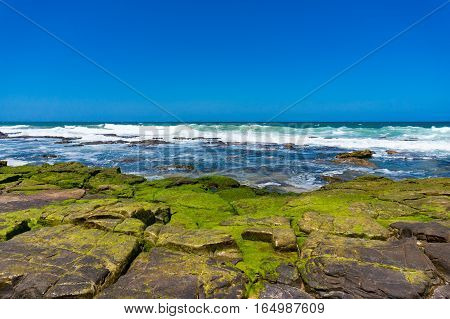 Clear Blue Sky, Ocean And Rock Covered With Algae, Moss