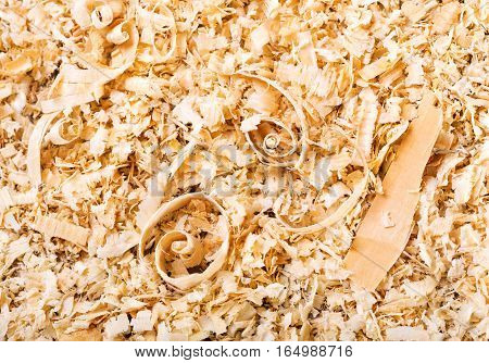 close up of wood sawdust as abstract background