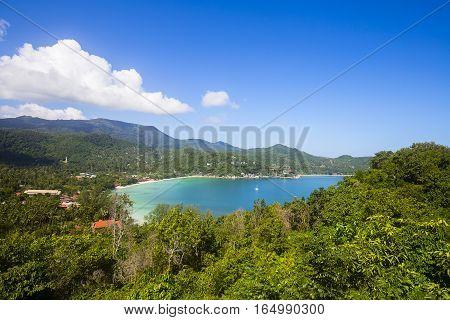 Tropical beach coconut palm tree and blue sea water. Island Koh Phangan Thailand