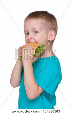 Cute Little Boy Eats Hamburger