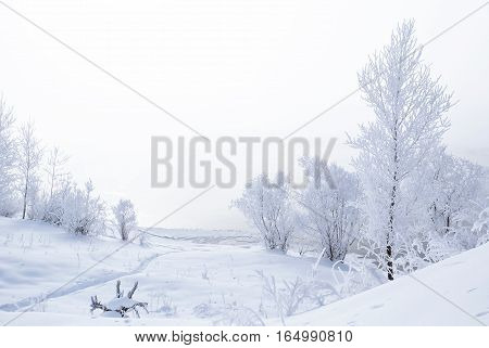 Winter landscape. Trees and bushes with hoarfrost. The water in the river floating mist. cold season. a grayish-white crystalline deposit of frozen water vapor formed in clear still weather Altai Siberia Russia