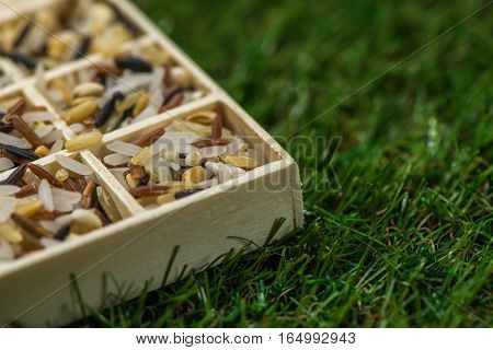 Variety of healthy grains and seeds in a wooden box mostly gluten free with rice, Sensitive Focus