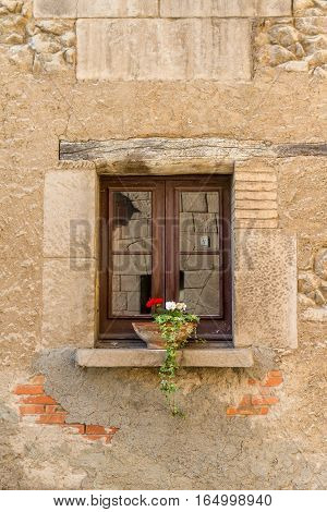 A small wooden window with a white and red plant