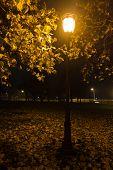Old fashioned lantern at autumn evening in Kalemegdan park, Belgrade, Serbia poster