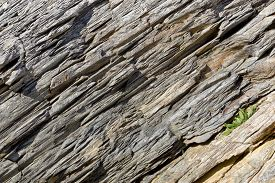 Background image of a wall of metamorphic rock.