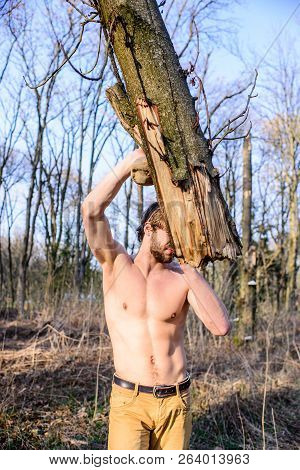 Strength And Brutality. Man Brutal Strong Attractive Guy Collecting Wood In Forest. Lumberjack Or Wo