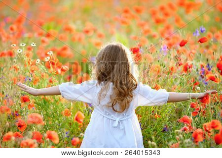 Adorable Little Girl Wearing White Dress In Summer Blooming Field Walking Under Evening Sun. Back Vi