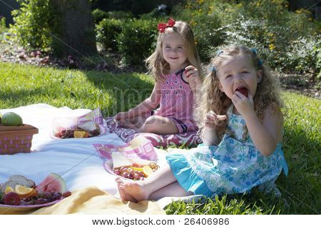 Girls at a summer picnic 01