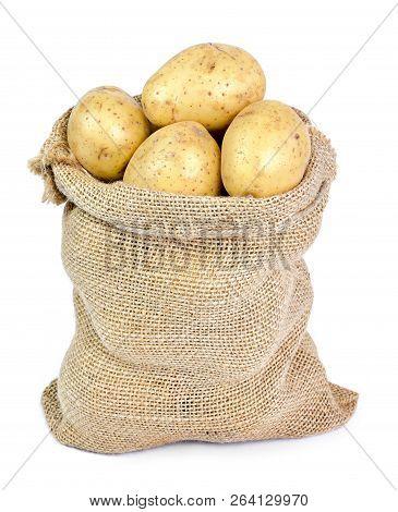 Fresh Raw Potatoes In A Burlap Sack. Earthy Potato Scene With Sackcloth, Isolated On White Backgroun