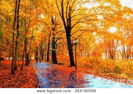 Autumn landscape. Autumn trees with yellow foliage and autumn leaves on the wet asphalt road in park autumn alley after rain, colorful autumn park scene