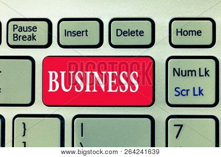 Writing Note Showing Business. Business Photo Showcasing Occupation Profession Commercial Activity S