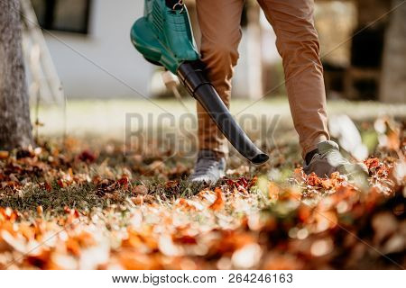 Professional Gardener Doing Landscaping Chores, Close Up Of Garden Works