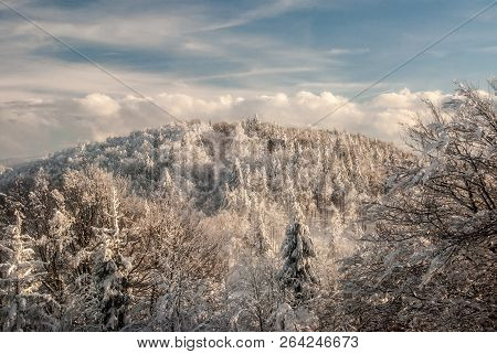 Hill Covered By Frozen Forest During Freezing Winter Day With Blue Sky And Clouds - Orol Hill From M