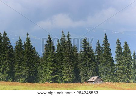 Beautiful Mountain Landscape With Wooden House In Summer Time,