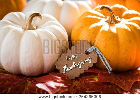 Thanksgiving Greeting Card With Handwriting
