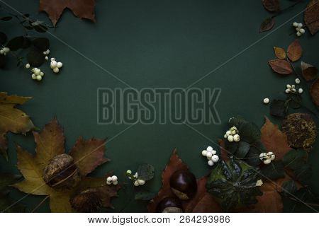 Dark Green Red Autumn Top View Background Frame
