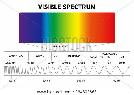 Visible Light Diagram. Color Electromagnetic Spectrum, Light Wave Frequency. Educational School Phys