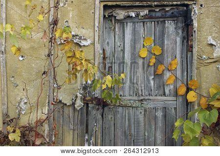 Abstract Strange Background. Old Wooden Door.old Door. Old Doors. Image Of Wooden Door. Old House. O