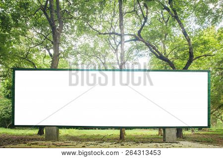 Green Forest Nature Background With Eco Label.