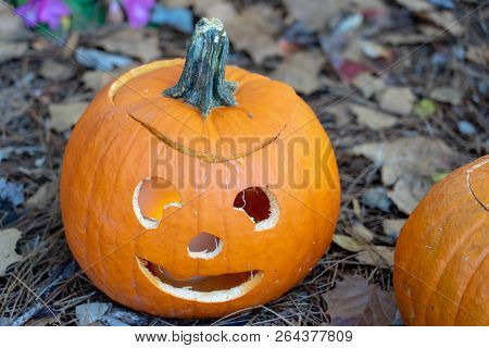Jack O Lantern With Smile Sitting In Fall Leaves