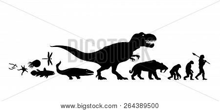 History Of Life On Earth. Silhouette. Timeline Of Evolution From Protozoa To Man. Human Development.