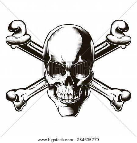 Human Skull With Cross Bones. Vector Illustration. Print Vector Design. Premium Quality Skull Concep