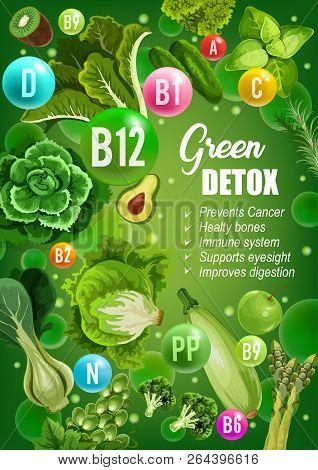 Green Diet For Detox, Immune System Or Bones Support And Cancer Prevention. Vector Color Diet Nutrit