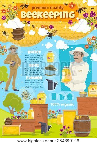 Beekeeping. Beekeeper Man At Apiary Taking Organic Natural Honey From Hive. Vector Cartoon Honey Bee