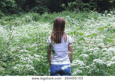 Beautiful young girl in the white in the meadow. Woman with white flowers. Girl in the forest. Girl backs in the tall grass. Woman with blond hair in white flowers