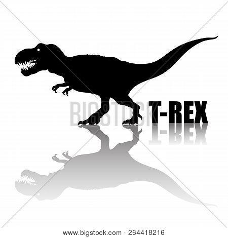Tyrannosaurus Rex. Silhouette With Transparent Reflection. Arnivorous Dinosaur. T Rex Walking And Ro