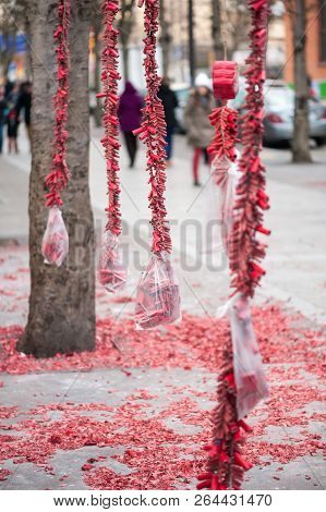 Red Fire Crackers Stripes Hanging On Trees For The Chinese New Year