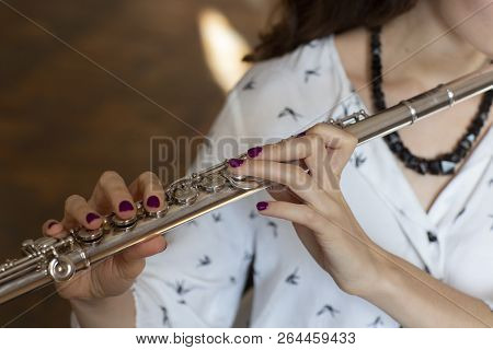 The Musician Flutist Girl Flute Player
